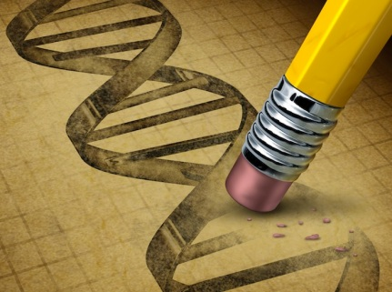 dna-drawing-and-pencil-eraser